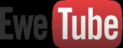 festisite_youtube